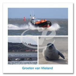 Ansichtkaart 15x15 Zeehondentochten Vlieland